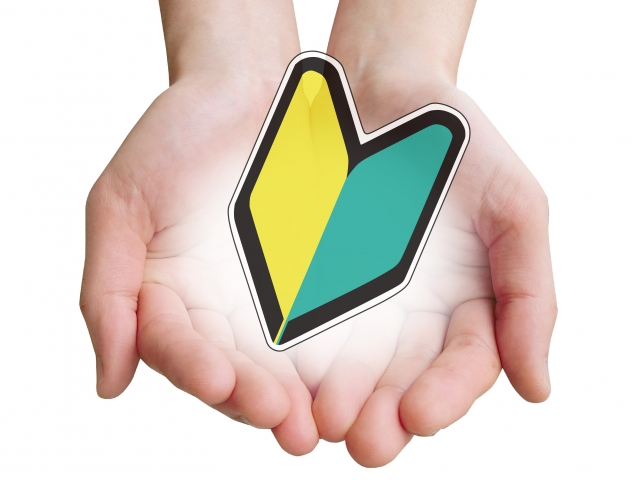 LAVA「ヨガビギナー」内容&体験談【呼吸や動かし方を確認できる入門編】